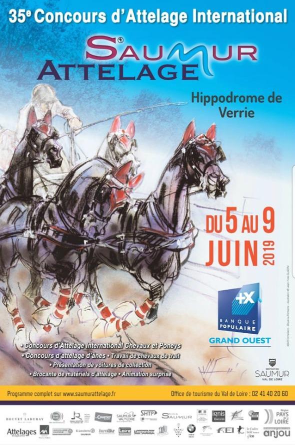 Saumur/Fra, Concorso Int.le 2*-3* @ Hippodrome de Verrie