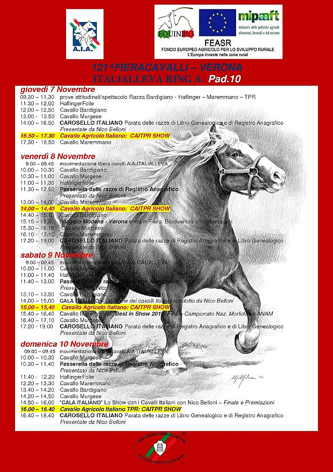 Il cavallo da lavoro