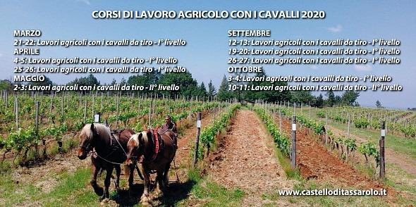 Tassarolo/AL, corso di lavoro agricolo con i cavalli @ Az. Vitivinicola Castello di Tassarolo, Loc. Alborina 1